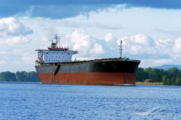 DryShips inks new loans and announces sale of Panamax bulk carrier Ecola