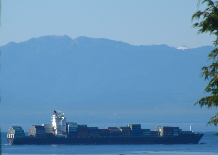Filipino seaman falls overboard containership in Lyttelton port of Christchurch