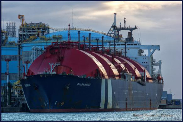 WILENERGY - IMO 8014409