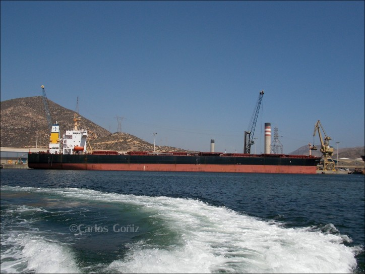Diana Shipping Announces Time Charter Contract for m/v Nirefs with Transgrain