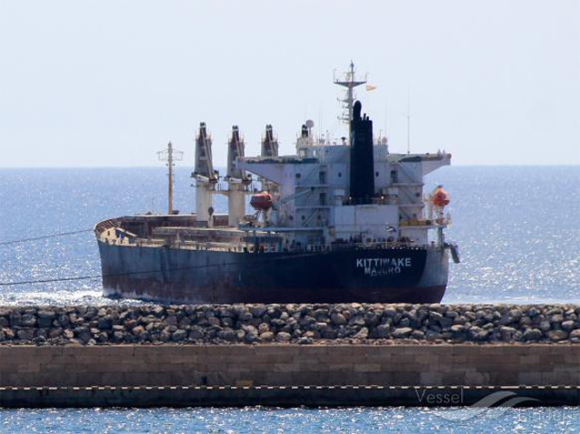 Eagle Bulk Opts to Sell Another Bulker, Stays in Red