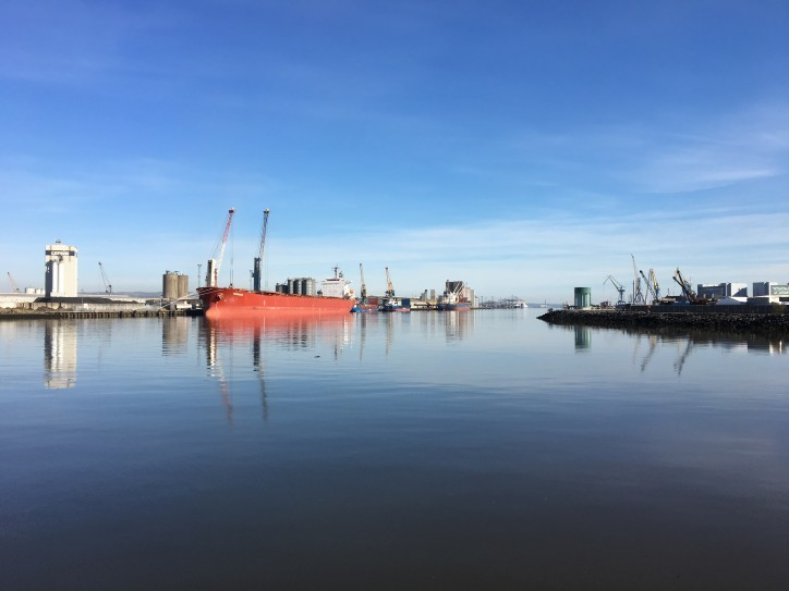 Belfast Harbour Announces Record Results and Major Investment Programme