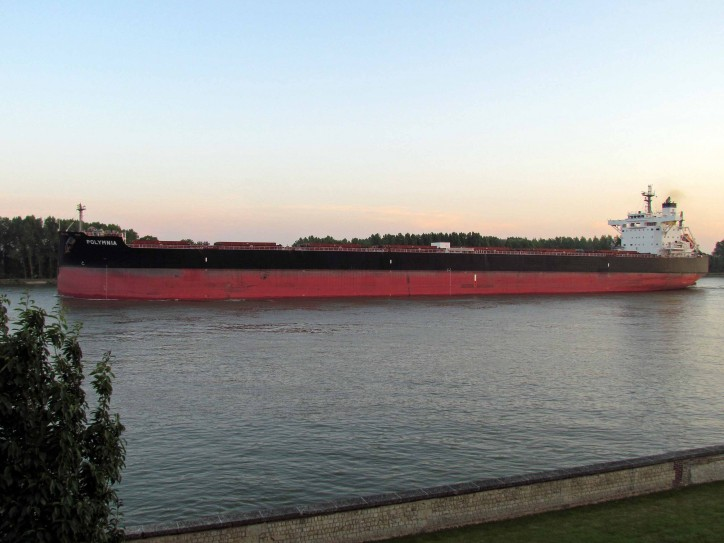 Diana Shipping announces time charter agreements