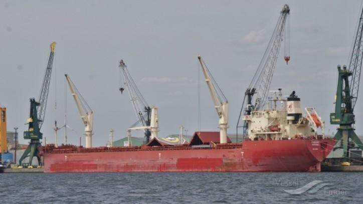 FEDNAV returns to Japanese shipyard OSHIMA for six more newbuildings