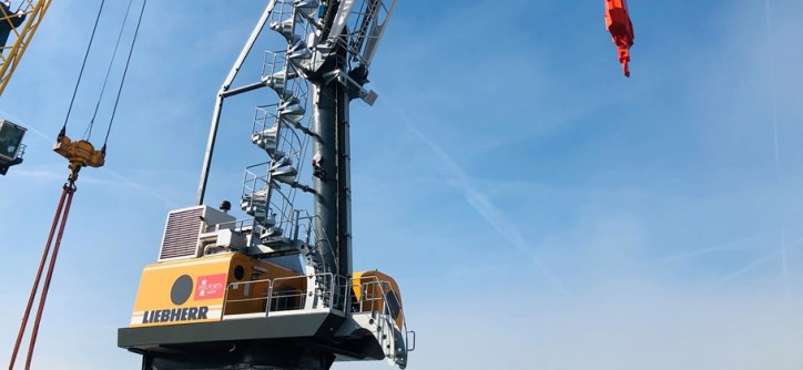 Port of Great Yarmouth hits new heights with crane investment