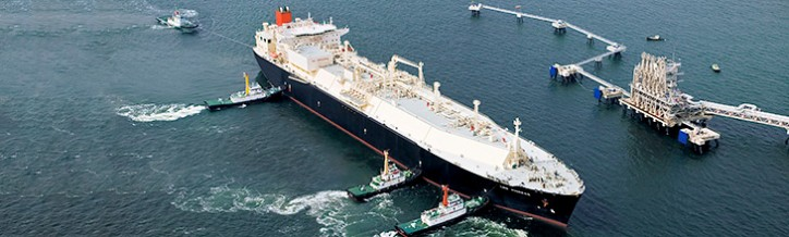 Top Japanese fleet owners have applied for India's biggest shipping tender worth $7 billion issued by state-run natural gas firm GAIL (India) Ltd to hire 11 new liquefied natural gas (LNG) carriers to ferry gas from the US.