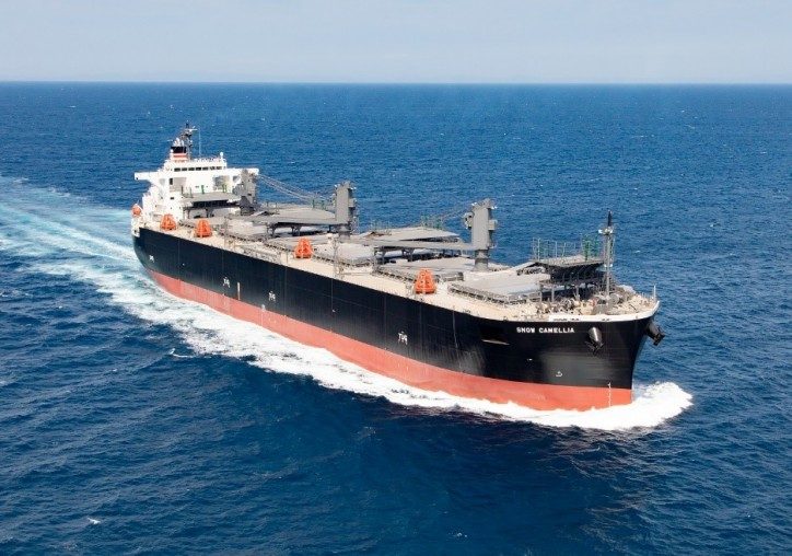 NYK Concludes Long-term Contract for a New Eco-friendly Wood-chip Carrier