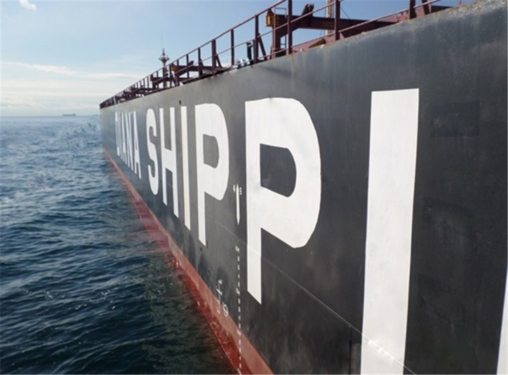 Diana Shipping takes delivery of Post-Panamax dry bulk vessel Electra
