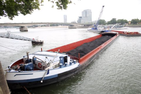 Maranta aground