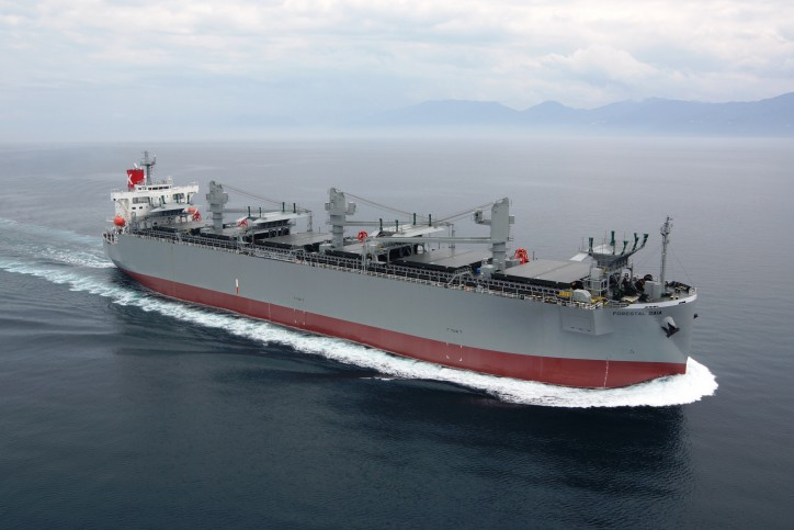 K-Line takes delivery of woodchip carrier Forestal Gaia from Tsuneishi Shipbuilding