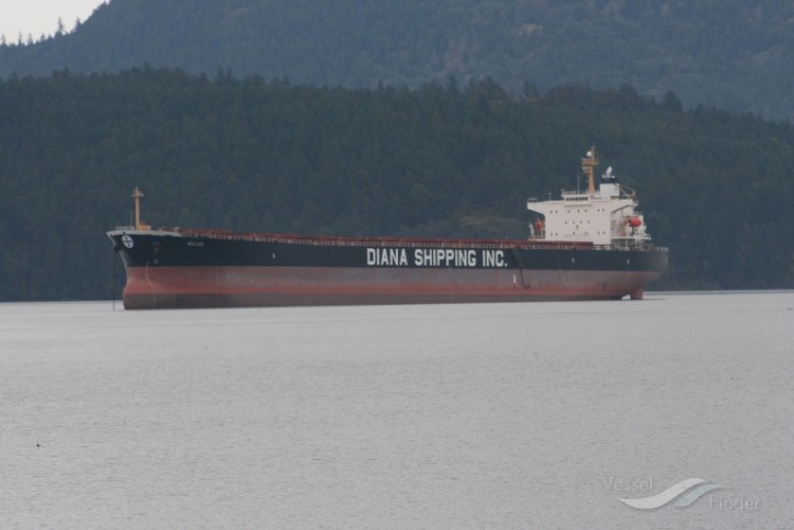Diana Shipping sells Panamax dry bulk vessel Melite