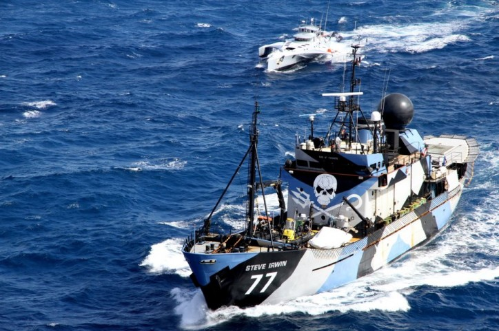 Sea Shepherd Ready for Southern Ocean Action