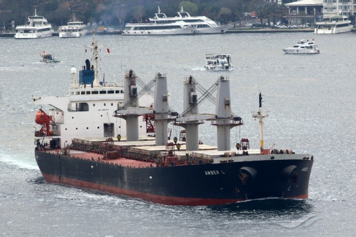 U.S. Coast Guard imposes intervention on two bulk carriers on Columbia River