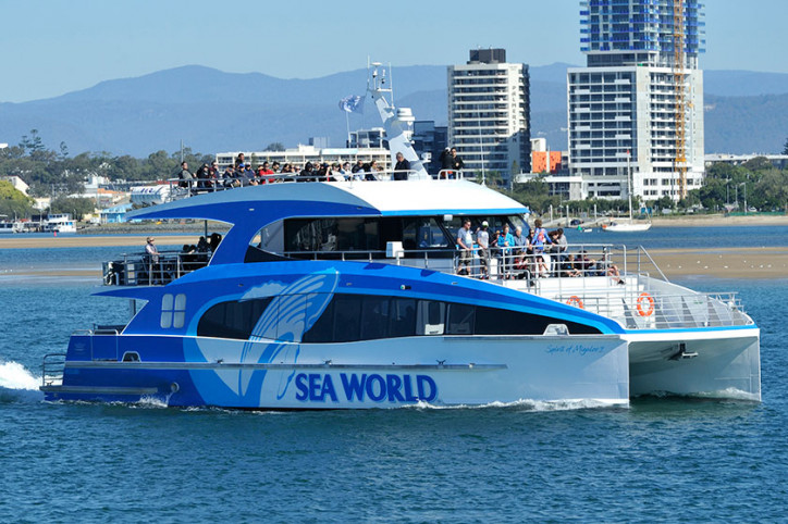 Australia's Most Advanced Whale Watching Vessel Operating in the Gold Coast