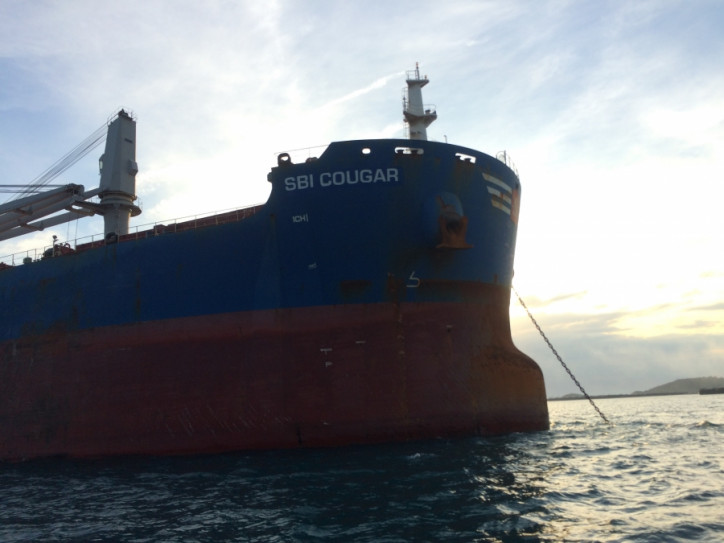 Scorpio Bulkers Announces the Sale of Two Ultramax Vessels for $37.9 Million