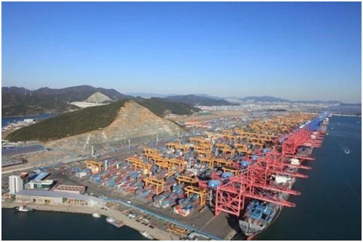 Hyundai Merchant Marine Secures Logistics Base in Busan Port