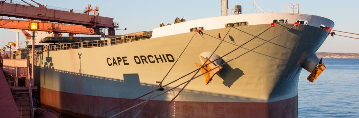 The Cape Orchid - the first merchant vessel registered under the South African flag since 1985