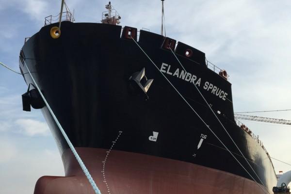 ELANDRA SPRUCE - IMO 9746243