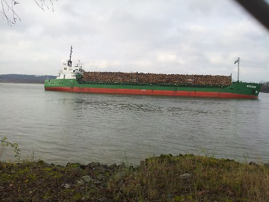 Cargo ship Nossan with 1-meter hole in the hull at risk of sinking in Sweden