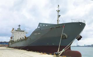 Container ship FESCO Yanina joins the FESCO fleet