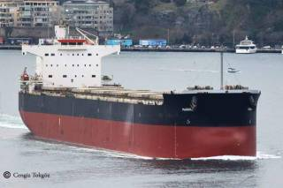 Diana Shipping Inc. Announces the Acquisition of a Kamsarmax Dry Bulk Vessel