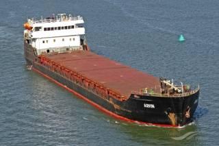 Palau-flagged cargo ship ARVIN sinks in Black Sea, off Turkey