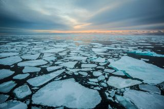 Nike and Ocean Conservancy announce new Arctic Shipping Pledge