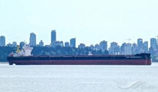 Very Large Bulk Carrier disabled after blackout, Yangtze river (Video)