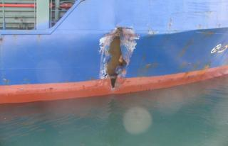 Collision between cargo ships Erdogan Senkaya and Luca S at Porto Nogaro, Italy