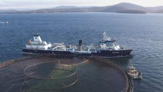 Ronja Storm's arrived at Havyard yard in Leirvik, ready to become the biggest wellboat in the world