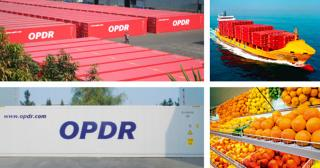 OPDR revises three of its established services connecting Morocco with Northern Europe and Russia