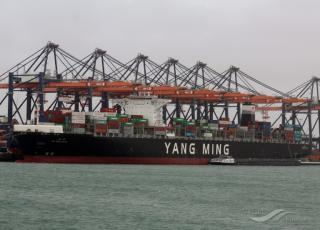 Yang Ming Marine to launch Taiwan–Hong Kong–Indonesia service and adjust port rotation of China–Indonesia service