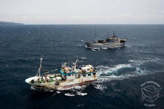Sea Shepherd Operation Albacore Results in Detention of Spanish Long-liner in São Tomé