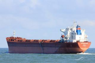 Navios Maritime Partners L.P. Announces Delivery of One Panamax Vessel