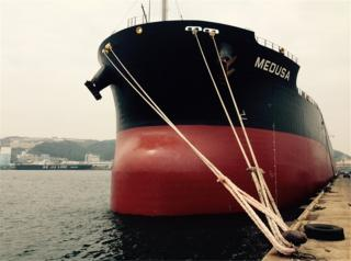 Diana Shipping Announces Direct Continuation of Time Charter Contract for mv Medusa with Cargill