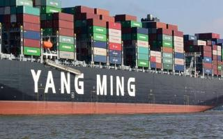 Yang Ming Launches Two Ultra Large Container Vessels