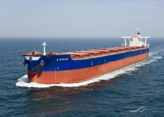 Golden Ocean takes delivery of dry bulk vessel Golden Gayle