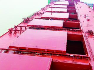 TTS Group ASA secures new contracts for cruise vessels and bulk carriers