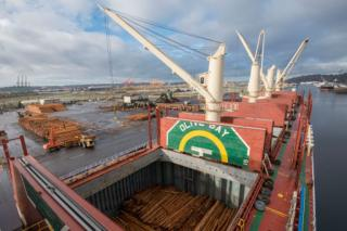 The Northwest Seaport Alliance welcomes the world's largest single-deck log ship - Olive Bay