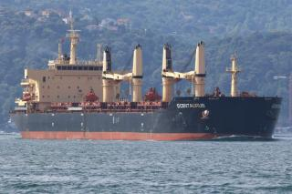 Star Bulk Carriers Corp agrees to acquire eleven dry bulk vessels from Delphin Shipping LLC