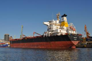 Diana Shipping Signs Charter Agreement for Panamax Bulker with Transgrain