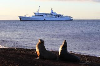 The Most Important Galapagos Islands Cruise Tips