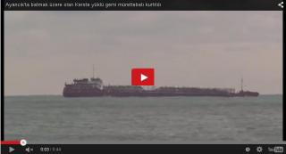 Freighter carrying shipment of wood sinks in the Black Sea