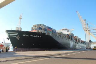 MSC Paloma - the largest container vessel in the Adriatic