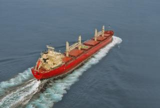 Fednav takes delivery of its 60th owned vessel