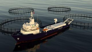 Complete fish handling system to delousing vessel