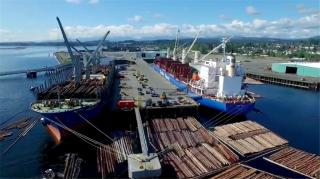 Video: Log Lift at Nanaimo Port