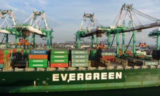 Container shipping industry recovering: Evergreen