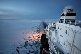Clean Arctic Alliance challenges Canada's Fednav on Arctic Shipping Fuel