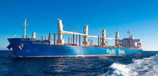 Pacific Basin purchases four modern ships 50% funded by new shares issued to ship sellers